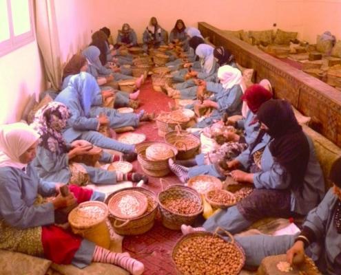 coopérative Maroc