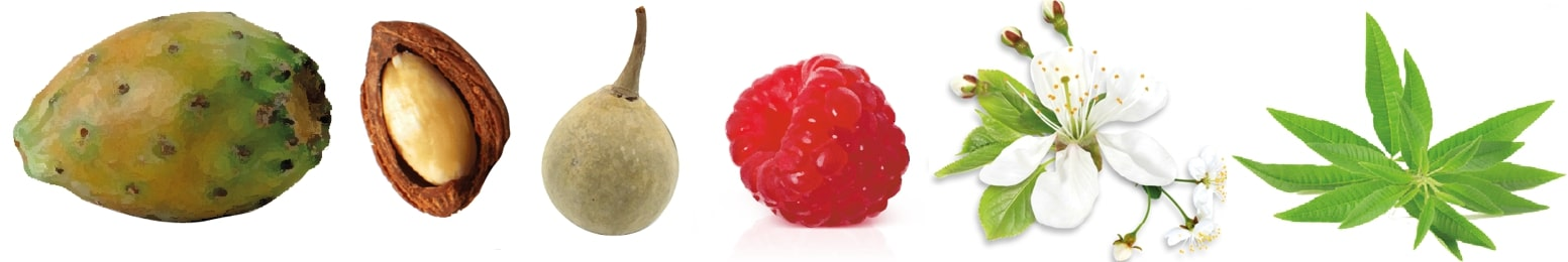 ingrédients huiles végétales essentielles sérum ayda